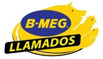 b-meg-llamados-logo